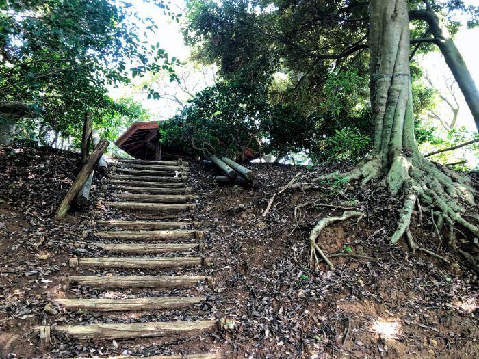 小山臨海公園の展望台に至る道