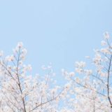 社会福祉法人への新卒入社1週目